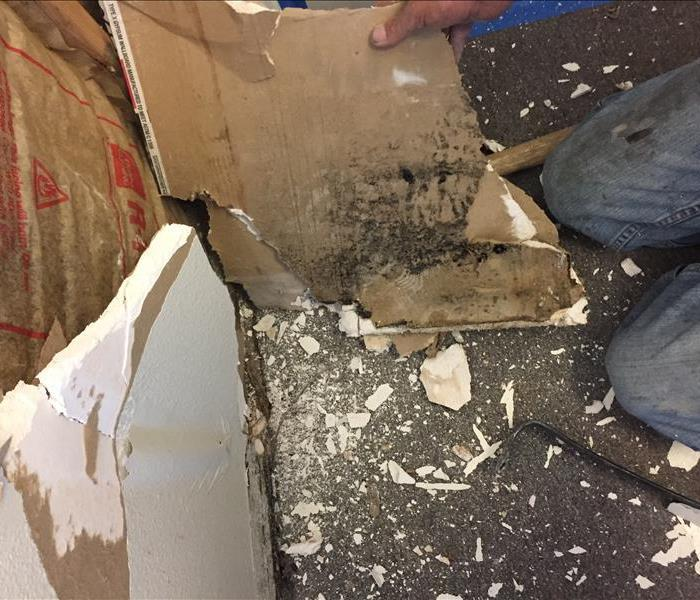 Mold growth found in drywall of residential home